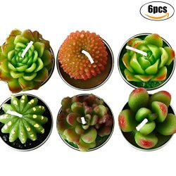 Coxeer Plant Candles, 6Pcs Simulated Succulent Candles Smokeless Tea Candles for Wedding Valenti ...