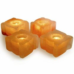 Hypnotic Gems Gallery: Pack of 4 Premium Quality Leaf Shaped Himalayan Salt Candle Holder – ...