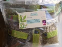 Herb Collection 10 ~ Wiccan Essentials ~ 10 Organic Herbs ~ Ravenz Roost Herbs ~ 1/2 Oz Ea ~ Spe ...