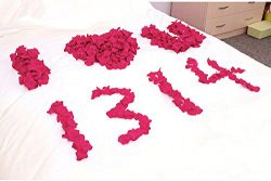Silk Rose Petals Flower for Courtship, Birthday Part, Valentine's Day, Candlelight Dinner. ...