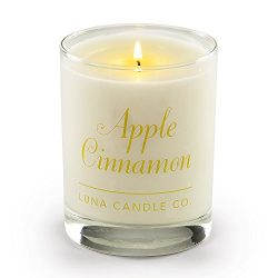 Luna Candle Co. Apple Cinnamon Soy Jar Candle, 11oz. Clear Glass, Up to 110 Hours of Burn Time,  ...