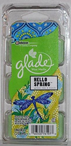 Glade Wax Melts – Hello Spring – Green Tea & Birch – 6 Count Wax Melts Per ...