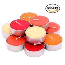 Exquizite Fall Collection – Highly Scented Luxury Tealight Candles – 64 pcs –  ...