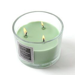 Apollo Aroma Scented Candles Aromatherapy Green Pine Tree – Natural Candle Soy Wax for Str ...