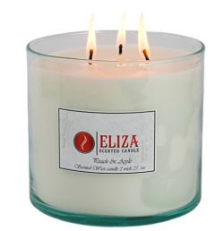Eliza Candles, Scented Candle Peach and Apple, Natural Soy Wax, 3-Wick 25 oz