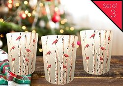 Banberry Designs Cardinal Candles – Set of 3 Frosted Glass Votive Holders – Red Card ...