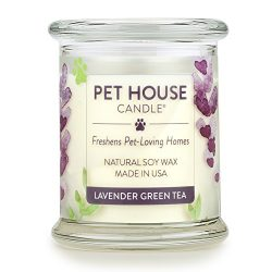 One Fur All 100% Natural Soy Wax Candle, 20 Fragrances – Pet Odor Eliminator, 60-70 Hrs Bu ...