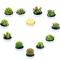 BLSMU Handmade Succulent Tealight Candles Valentine's Day Birthday Party Wedding Spa Home  ...