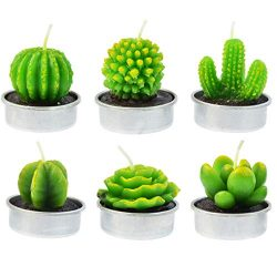 mifengda 6 Pcs Cactus Tealight Candles Handmade Delicate Succulent Cactus Candles for Valentine& ...