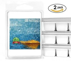 Lee Naturals Spring & Summer – (2 Pack) FRESH RAIN Premium All Natural 6-Piece Soy Wax ...