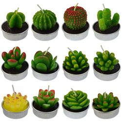 mifengda 12 PCS Cute Succulent Cactus Candles Handmade Delicate Candles Decorative Smokeless Cac ...