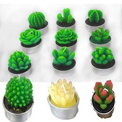 Cactus Tealight Candles Set of 12pcs, Handmade Succulent Cactus Candles for Spa Home Valentine&# ...