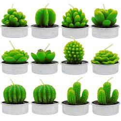 BTUTU 12pcs Cactus Tealight Candles Handmade Mini Succulent Cactus Candles for Party Favors, Hom ...