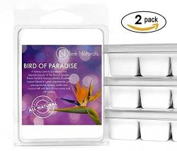 Lee Naturals Spring & Summer – (2 Pack) BIRD OF PARADISE Premium All Natural 6-Piece S ...
