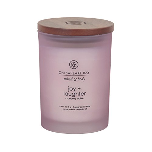 Chesapeake Bay Candle Mind & Body Medium Scented Candle, Joy + Laughter (Cranberry Dahila)