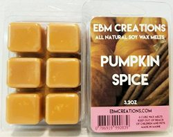 Pumpkin Spice – Scented All Natural Soy Wax Melts – 6 Cube Clamshell 3.2oz Highly Sc ...