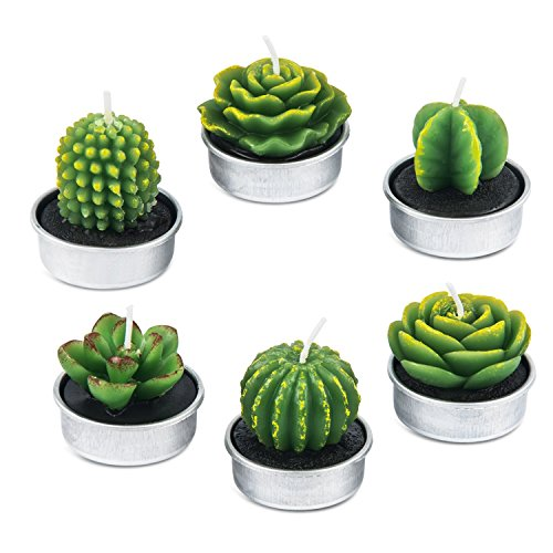 amasky Cactus Tealight Candles, Handmade Delicate Succulent Cactus Candles Valentine's Day ...