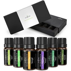 Essential Oils Set Anjou 100 Pure Top 6 Aromatherapy Oils Basic Sampler Gift Kit, 6/10 ml (Laven ...