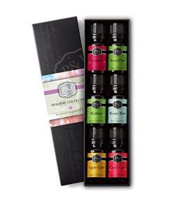 Holiday Set of 6 Premium Grade Fragrance Oils – Mistletoe, Candy Cane, Wintermint, Apple C ...