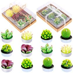 Glarks Cute Tea Lights Tealight Candles, Succulent Cactus for Birthday Party Valentine's D ...