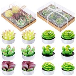 Glarks 12Pcs a Pack Artificial Succulents Candles Handmade Cactus Tealight Candles for Birthday  ...