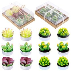 Glarks 12Pcs a Pack Succulent Cactus Candles Birthday Party Valentine's Day Wedding Spa Ho ...