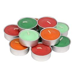 Exquizite Winter Holiday Scented Tealights – 64 pcs – Set of 16 Highly Scented Luxur ...
