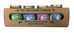 Our Own Candle Company 4 Pack Spring Assortment Mini Mason Jar Candles – 3.5 Oz Coconut Ba ...