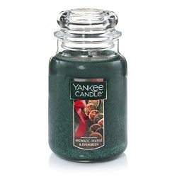 Yankee Candle Large Jar Candle, Aromatic Orange & Evergreen