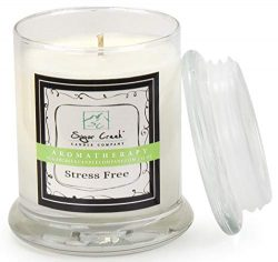 Aromatherapy Soy Wax Scented Candle – Stress Relief (Eucalyptus Mint) | Non Toxic –  ...