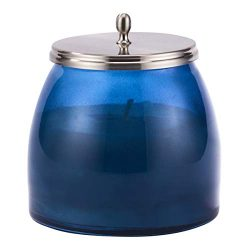 LA JOLIE MUSE Aromatherapy Scented Candle Stress Relief Eucalyptus Fig, Large Glass Jar, 14.82 Oz