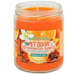 Mandarin Spice Pet Odor Exterminator 13 Ounce Jar Candle