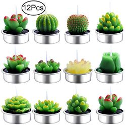 Outee Cactus Tealight Candles, 12 Pcs Handmade Delicate Succulent Cactus Candles Flameless Aroma ...