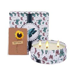 Nextbox Scented Candle Gift 13.5 Oz,Spring Fresh Scented Candle, Aromatherapy Large Tin Candle 3 ...