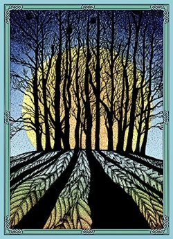 Tree-Free Greetings Solstice Cards and Envelopes, Set of 10, 5 x 7″, Winter Solstice (HB93353)