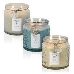 Dynamic Collections Snowflake Embossed Christmas Jar Candle – 3 Pack – Scented 2-Wick Cand ...