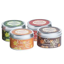 Scented Travel Tin Candles Set of 4 fragrances | Pumpkin Spice, Fall leaves, Cinnamon Sticks and ...