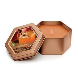 Root Legacy Travel Tin Beeswax Candle, Mulled Cider