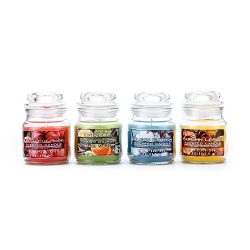 Supreme Lights Natural Scented Jar Candle Set(4pcsx3oz), Rose, Cotton, Autumn Leaves and Sage &a ...