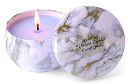 8.1oz Scented Candles 45H Up Burning Time Big Travel Tin Soy Wax Candles to Create Mood & En ...