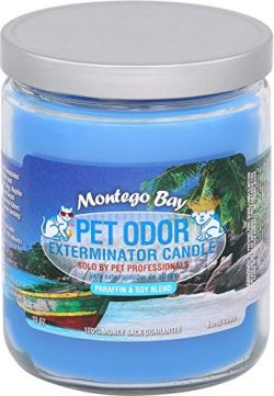 Specialty Pet Products Montego Bay Pet Odor Exterminator 13 Ounce Jar Candle