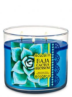Bath & Body Works Candle 3 Wick 14.5 Ounce 2016 Edition Baja Cactus Blossom
