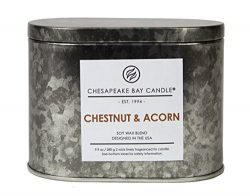 Chesapeake Bay Candle Heritage Two-Wick Tin Scented Candle, Chestnut & Acorn