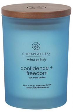 Chesapeake Bay Candle Mind & Body Medium Scented Candle, Confidence + Freedom (Oak Moss Amber)