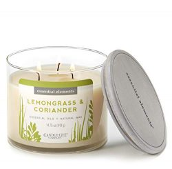 Essential Elements by Candle-Lite Scented Lemongrass & Coriander 3-Wick Jar Candle 14.75 oz. ...