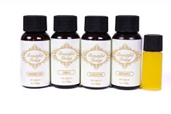 Fragrance Oil Sampler Set With Bonus Oil- Green Apple, Clean Cotton, Vanilla, Cinnamon and Bonus ...