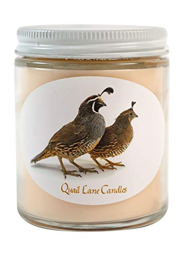 Quail Lane Candles – Apple Harvest – Cinnamon Infused Soy Wax Scented Candle – ...