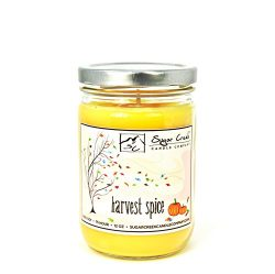 Sugar Creek | Harvest Spice Soy Scented Candle – Fall Candles Collection | 100% Natural &# ...