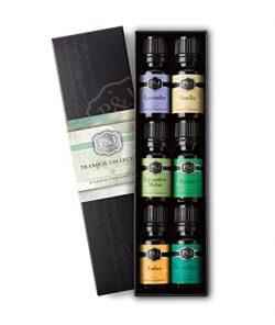 Tranquil Set of 6 Premium Grade Fragrance Oils – Vanilla, Cucumber Melon, Lavender, Amber, ...