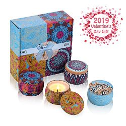 Exqline Scented Candles Gift Set of 4, Natural Aromatherapy Candles Aroma Fragrance Candles 100% ...